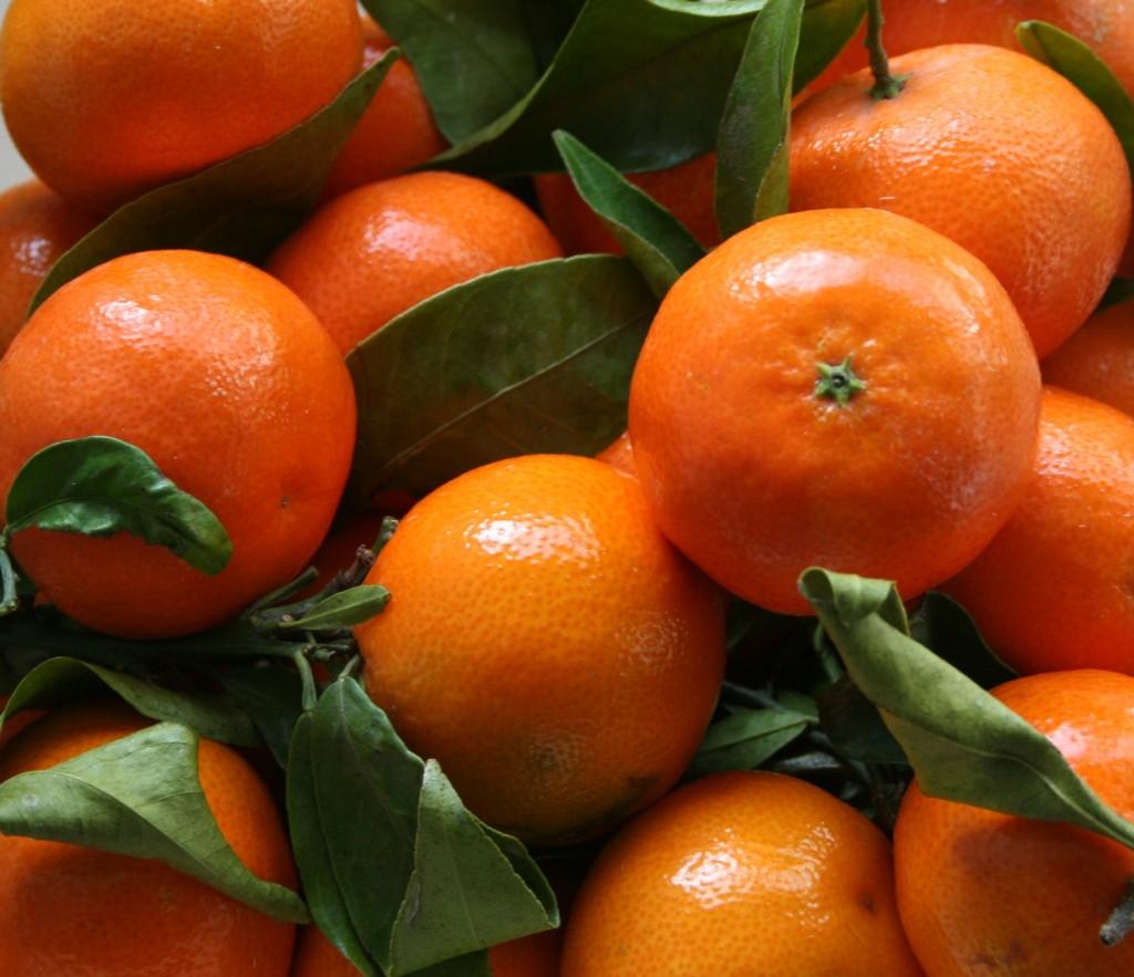 sinasappels-1024x883